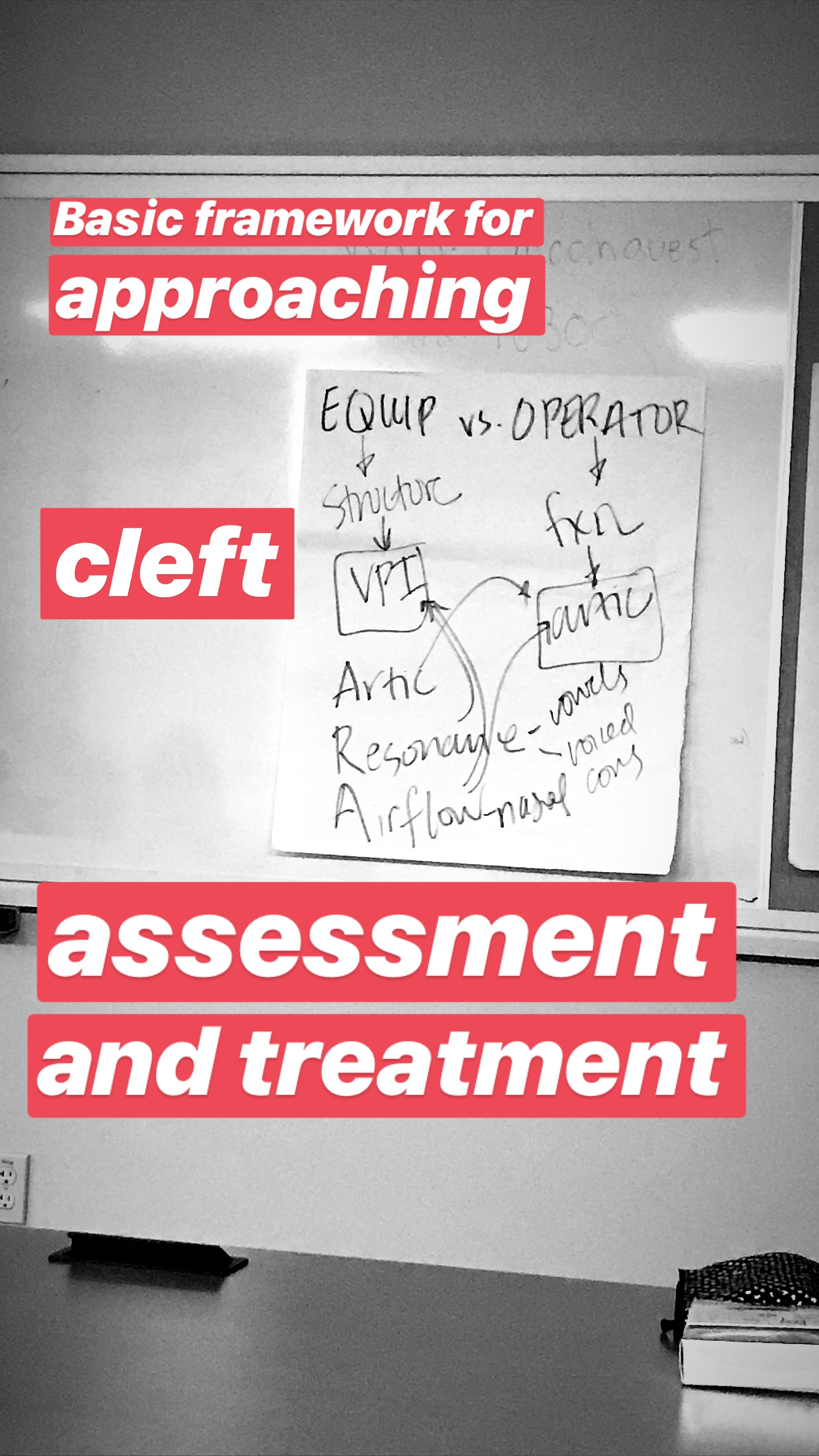 Cleft assessment & treatment framework 2